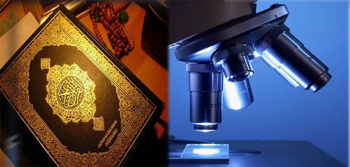 Quran-and-Science